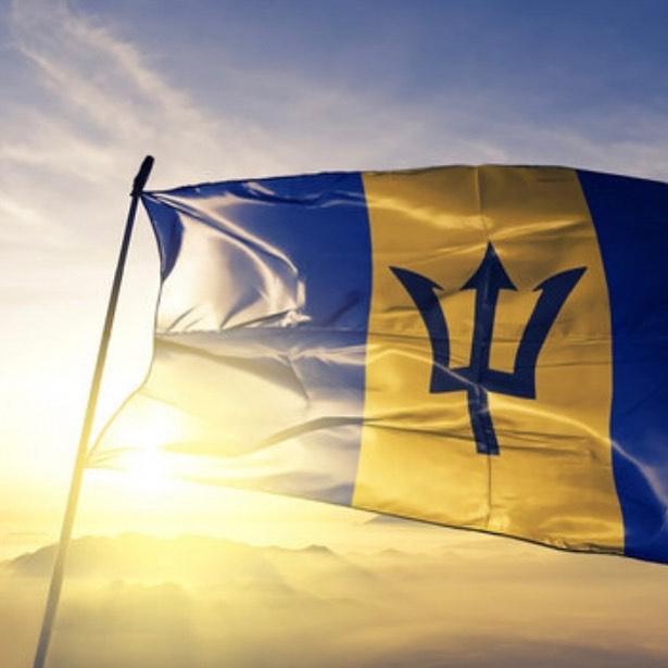 Happy Independence Day, Barbados! #barbados🇧🇧 #barbadosindependence #caribbean #ichcollection #caribbeanfood #bajanpride